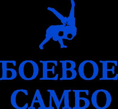 Принт Толстовка Боевое Самбо - FatLine
