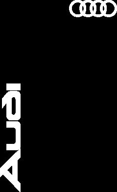 Принт Тельняшка с длинным рукавом Audi Sport - FatLine