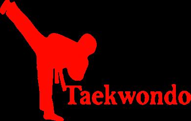 Принт Женская футболка Taekwondo - FatLine