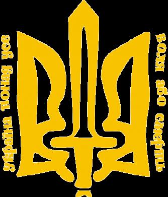 Принт Женская футболка с V-образным вырезом Україна понад усе! Воля або смерть! - FatLine
