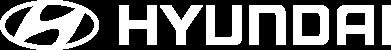 Принт Футболка с длинным рукавом Hyundai 2 - FatLine