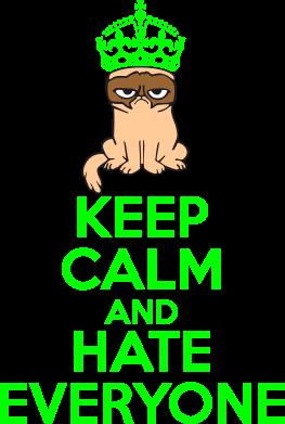 Принт Толстовка KEEP CALM and HATE EVERYONE - FatLine