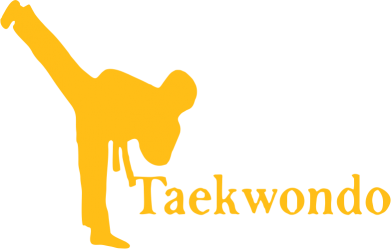 Принт Толстовка Taekwondo - FatLine