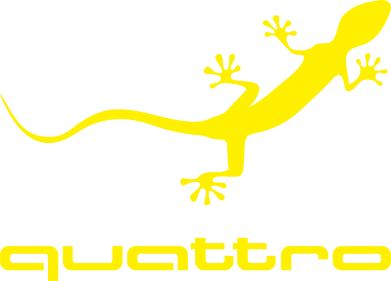 Принт Quattro - FatLine
