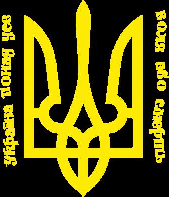 Принт Футболка Поло Україна понад усе! Воля або смерть! - FatLine