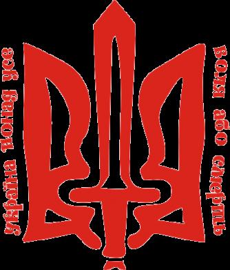 Принт Подушка Україна понад усе! Воля або смерть! - FatLine