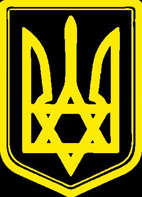 Принт Мужские шорты Звезда Давида+герб - FatLine
