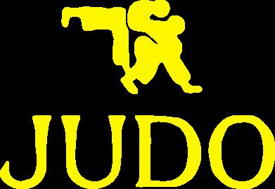 Принт Judo - FatLine