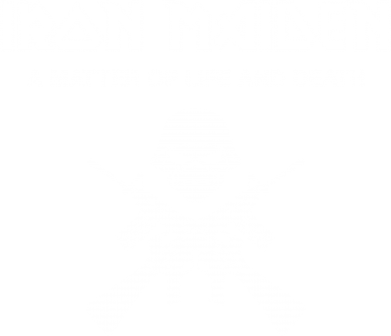 ����� ������� ��������  � V-�������� ������� Iron Maiden - FatLine