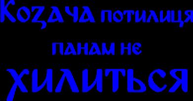 Принт Фартук Козача потилиця панам не хилиться - FatLine