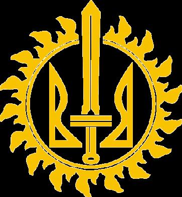 Принт Футболка Поло Герб Правого Сектору у сонці - FatLine