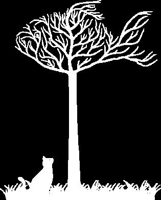Принт Детская футболка Кот прыгает на дерево - FatLine