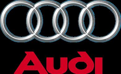 Принт Женские шорты Audi 3D Logo - FatLine
