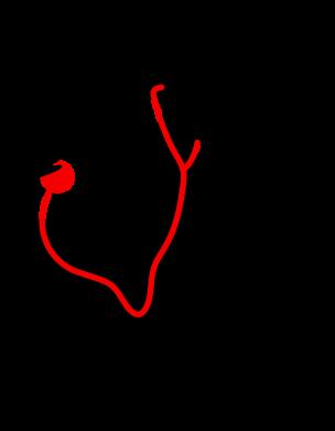 Принт Женская футболка с V-образным вырезом iBolit - FatLine
