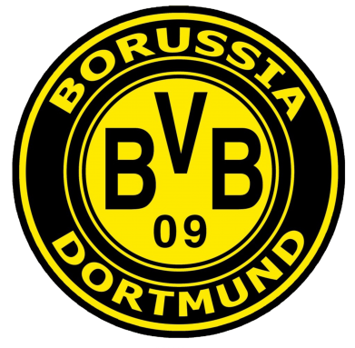 Принт Реглан Borussia Dortmund - FatLine