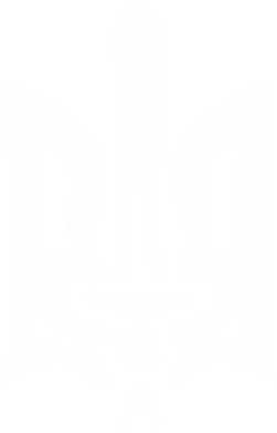 Принт Футболка Поло Герб з мечем - FatLine