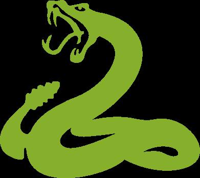 Принт Женская толстовка Змея - FatLine