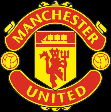 Принт Мужские шорты Манчестер Юнайтед - FatLine