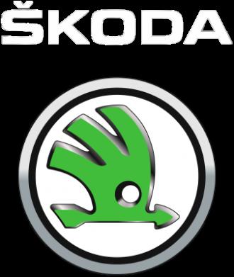 Принт Женская футболка Skoda Logo 3D - FatLine