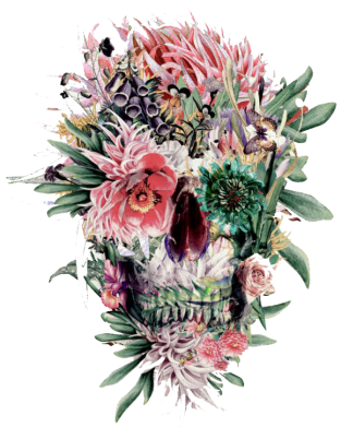 Принт Футболка Flower Skull 2 - FatLine