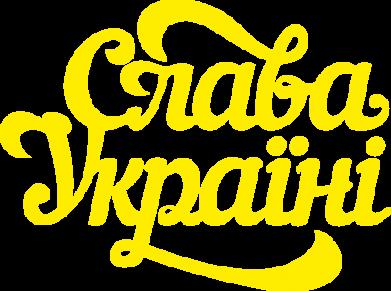 Принт Камуфляжная футболка Слава Україні! - FatLine