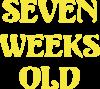 CrossFit  с гирей