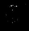 Отпечаток гусениц WOT