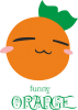 Funny orange