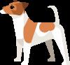 Black Star Logo