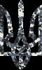Камуфляжный герб Украины
