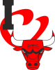 I love Chicago Bulls