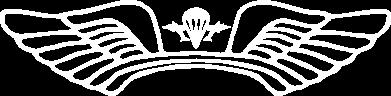 Принт Мужская футболка  с V-образным вырезом Крылья десанта - FatLine