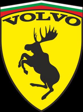 Принт Штаны Volvo Logo - FatLine