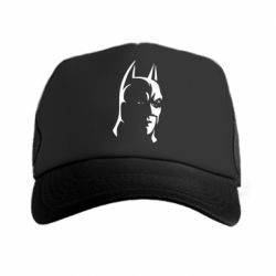 �����-������ Batman Hero