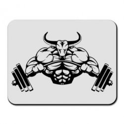 ������ ��� ���� Big Bull - FatLine