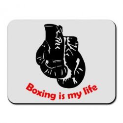 ������ ��� ���� Boxing is my life - FatLine