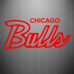 Наклейка Bulls from Chicago - FatLine