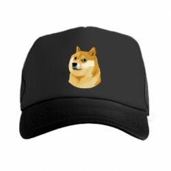 �����-������ Doge