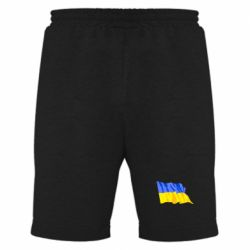 Мужские шорты Флаг - FatLine