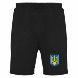 Мужские шорты Герб неньки-України - FatLine