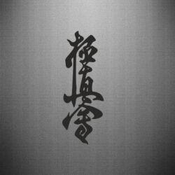 Наклейка Ієрогліф - FatLine
