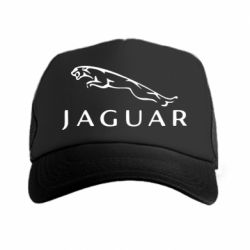 �����-������ Jaguar - FatLine