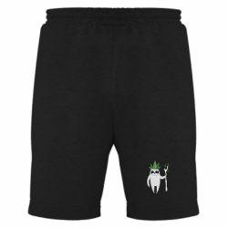 Мужские шорты King sloths