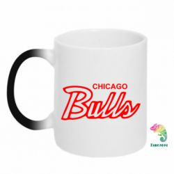 Кружка-хамелеон Bulls from Chicago - FatLine