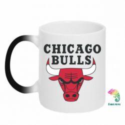 Кружка-хамелеон Chicago Bulls Classic - FatLine