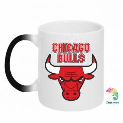 Кружка-хамелеон Chicago Bulls vol.2 - FatLine