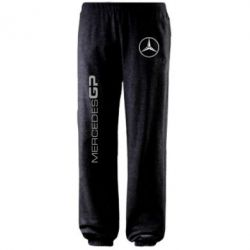 Штаны Mercedes GP Logo - FatLine