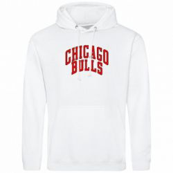 ��������� ������� Chicago Bulls - FatLine