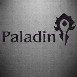 Наклейка Paladin - FatLine
