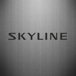�������� Skyline - FatLine